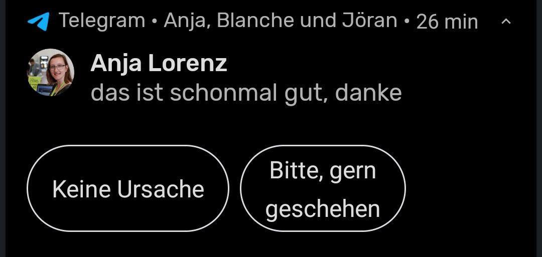"""Screenshot einer Telegram-Nachricht: """"Das ist schonmal gut, danke"""". Telegram zeigt Buttons """"Keine Ursache"""" und """"Bitte, gern geschehen"""""""