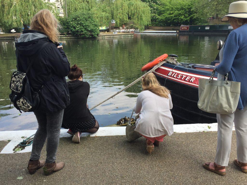Londoner Küken in Little Venice, Smartphone-Fotografen