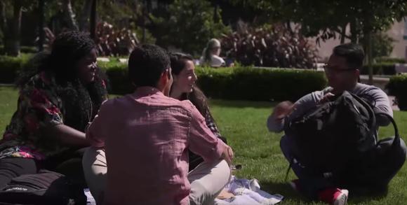 Vier glückliche Studierende sitzen im Grünen